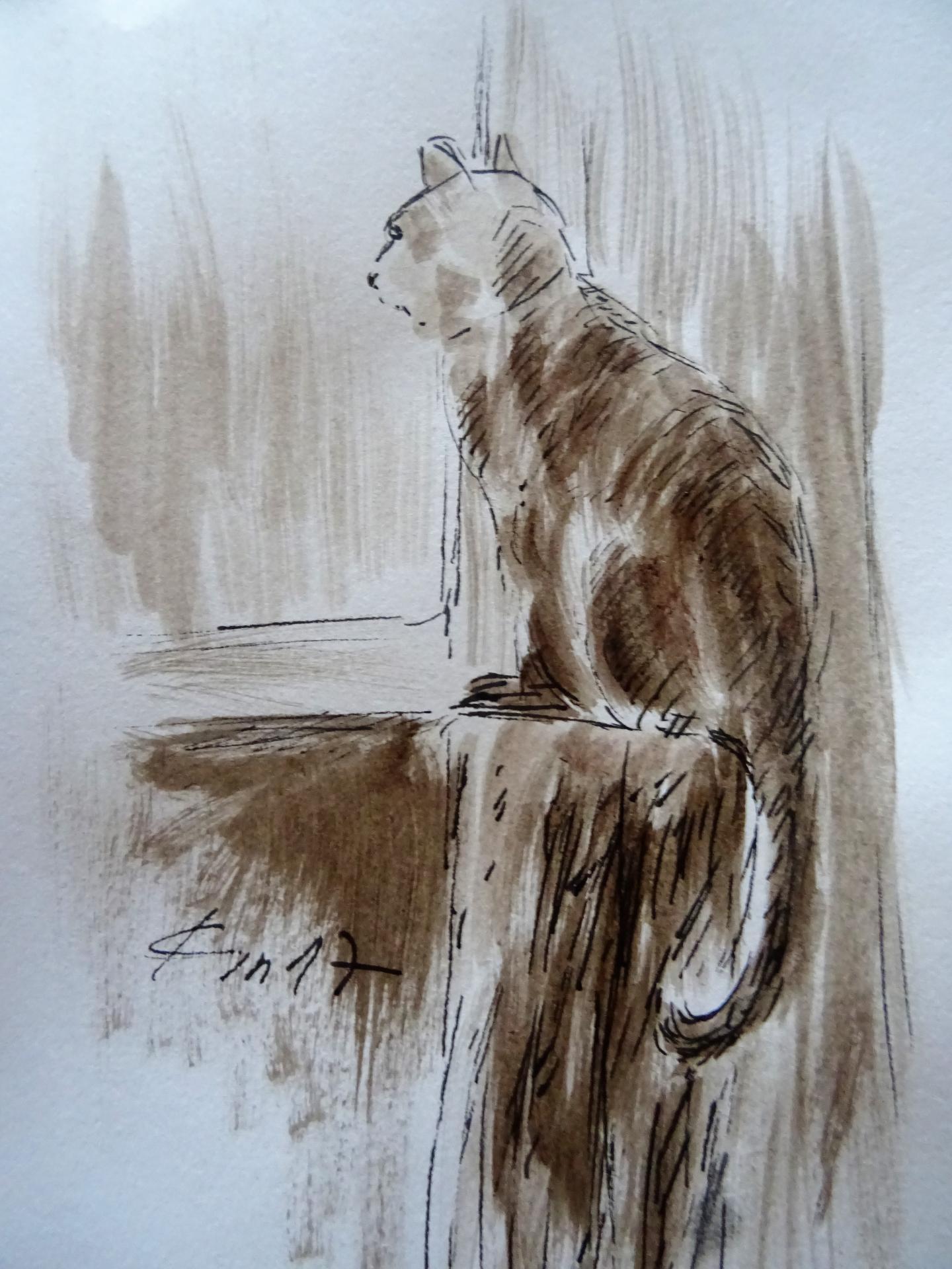 Le chat dessin au lavis de jean joseph chevalier 118